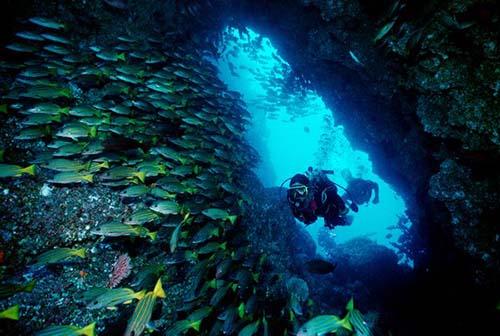diving costa blanca